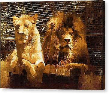 Lion And Wife Canvas Print by Deborah MacQuarrie