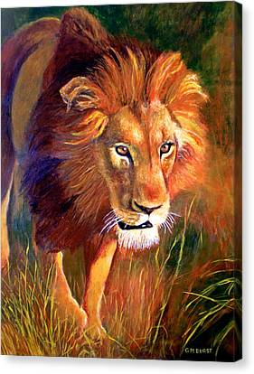 Lion At Sunset Canvas Print by Michael Durst