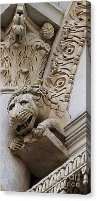 Lion Gargoyle Italian Renaissance Canvas Print by Cimorene Photography