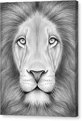 Lion Head Canvas Print by Greg Joens