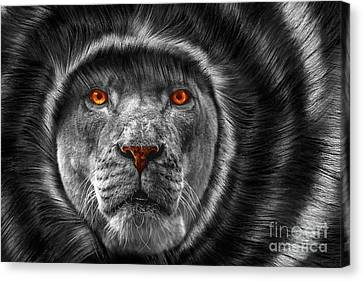 Lion Lady   -3 Canvas Print by Prarthana Kulasekara