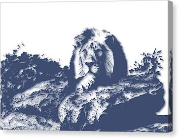Lion3 Canvas Print by Joe Hamilton