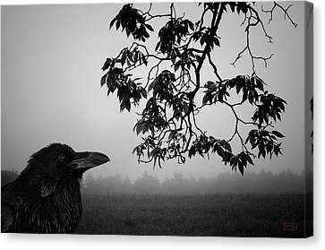 Listening To The Leaves Canvas Print by Dave Gordon