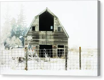 Little Barn Canvas Print by Julie Hamilton