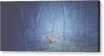 Little Fox In The Woods Canvas Print by Carrie Ann Grippo-Pike