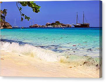 Little Paradise Canvas Print by Kaye Menner