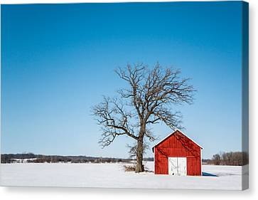 Little Red Shed Canvas Print by Todd Klassy
