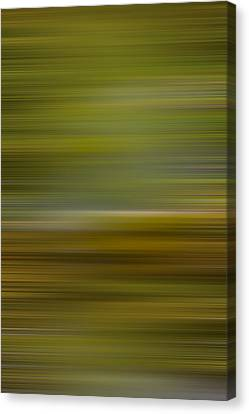 Living Water X Canvas Print by Jon Glaser
