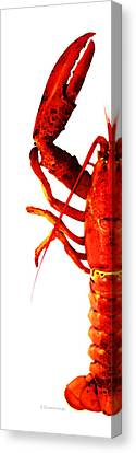 Lobster - The Left Side Canvas Print by Sharon Cummings