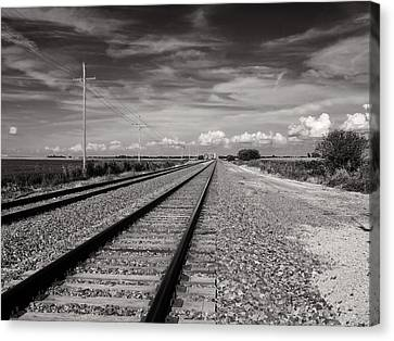 Locomotion Canvas Print by Tom Druin