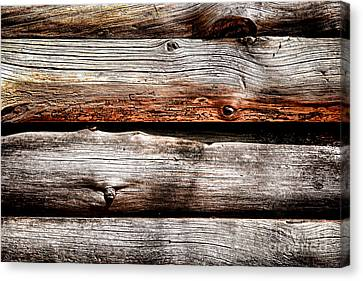 Log Cabin Wall Canvas Print by Olivier Le Queinec