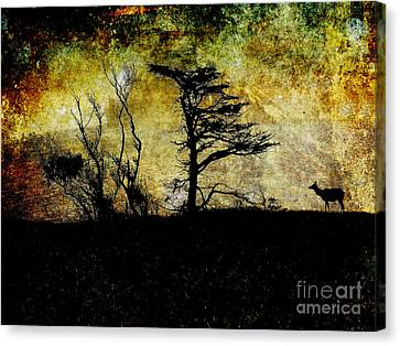 Lone Elk Of Tomales Bay . Texture Canvas Print by Wingsdomain Art and Photography