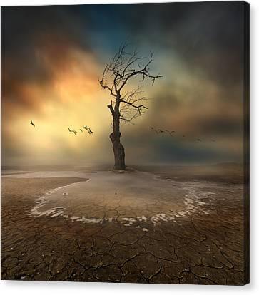 Lonely Canvas Print by Piotr Krol (bax)