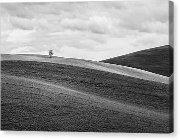 Lonesome Canvas Print by Ryan Manuel