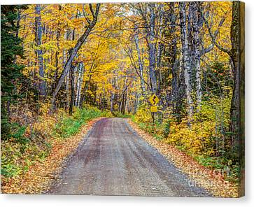 Long And Winding Autumn Roads North Shore Minnesota Canvas Print by Wayne Moran