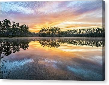 Long Pine Colors Canvas Print by Jon Glaser