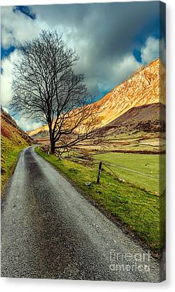 Long Road Home Canvas Print by Adrian Evans