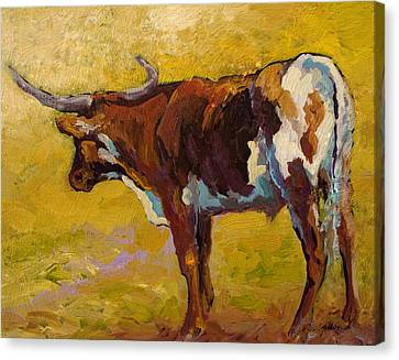 Longhorn Study Canvas Print by Marion Rose