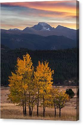 Longs Peak From Moraine Park - Fall Canvas Print by Aaron Spong