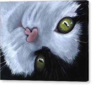 Looking At You Canvas Print by Anastasiya Malakhova