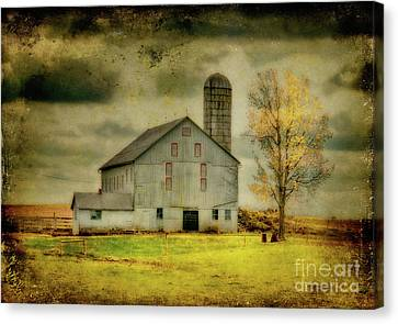 Looking For Dorothy Canvas Print by Lois Bryan