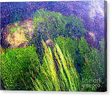 Looking Into The Rivers Canvas Print by Joyce Woodhouse