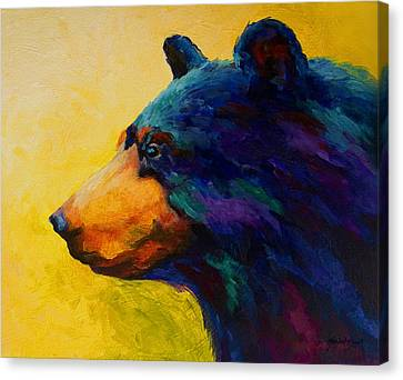 Looking On II - Black Bear Canvas Print by Marion Rose