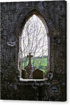 Looking Out Fuerty Church Roscommon Ireland Canvas Print by Teresa Mucha