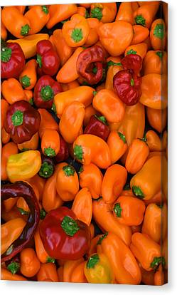 Lots Of Peppers Canvas Print by Frank Wilson