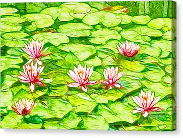 Lotus Flower In The Pond 2 Canvas Print by Lanjee Chee