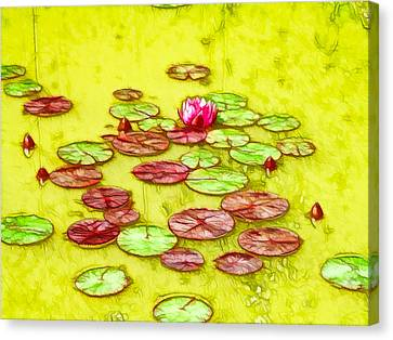 Lotus Flower On The Water 2 Canvas Print by Lanjee Chee