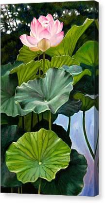Lotus Rising Canvas Print by John Lautermilch