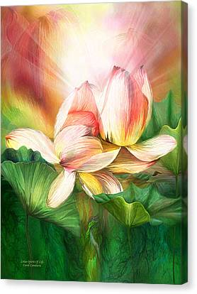 Lotus - Spirit Of Life Canvas Print by Carol Cavalaris