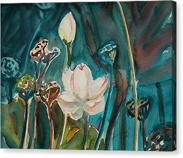 Lotus Study I Canvas Print by Xueling Zou