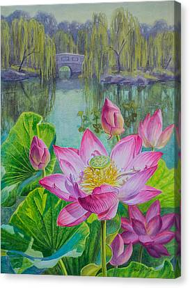 Lotuses In A Chinese Garden 1 Canvas Print by Fiona Craig