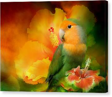 Love Among The Hibiscus Canvas Print by Carol Cavalaris
