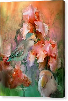 Love Among The Irises Canvas Print by Carol Cavalaris