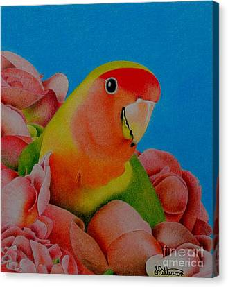 Love Bird Canvas Print by Sharon Patterson