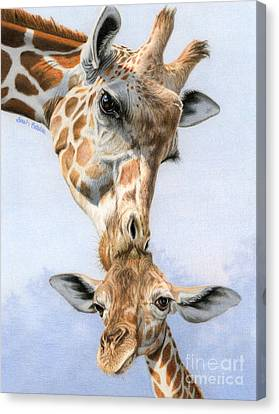 Love From Above Canvas Print by Sarah Batalka