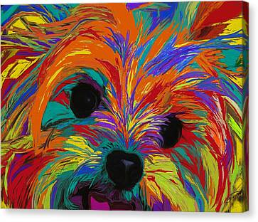 Love In Color Canvas Print by Patti Siehien