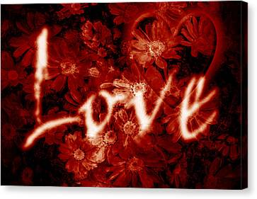 Love With Flowers Canvas Print by Phill Petrovic