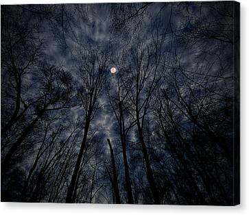 Lovely Dark And Deep Canvas Print by Robert Geary