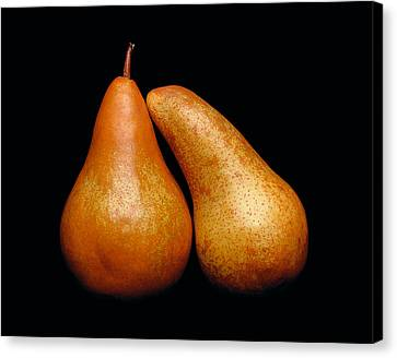 Loving Pair Canvas Print by Gary Cloud