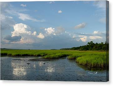 Low Tide Canvas Print by Suzanne Gaff