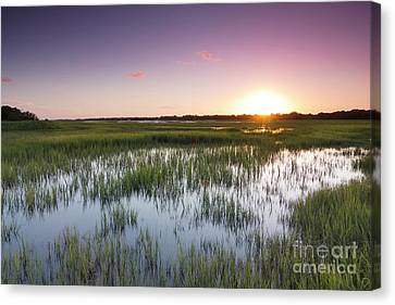 Lowcountry Flood Tide Sunset Canvas Print by Dustin K Ryan