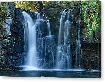 Lower Johnson Falls 2 Canvas Print by Larry Ricker