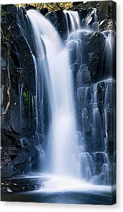 Lower Johnson Falls 3 Canvas Print by Larry Ricker