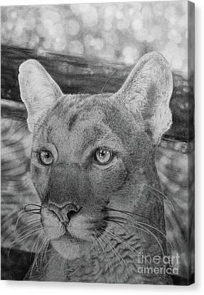 Lucy Canvas Print by Jennifer Watson