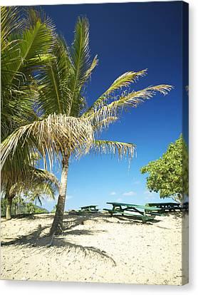 Lydgate Beach On Kauai Canvas Print by Kicka Witte - Printscapes