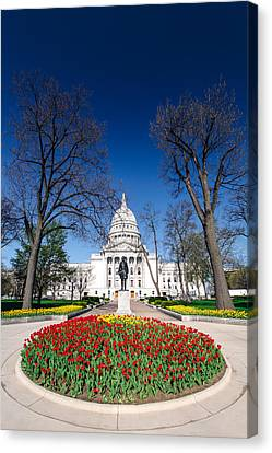Madison Capitol Tulips Canvas Print by Todd Klassy